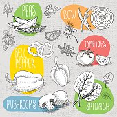 Set of stickers in sketch style, food and spices, old paper textured background. Mushrooms, bow, tomato, bell pepper, peas, spinach. Hand drawn vector illustration.