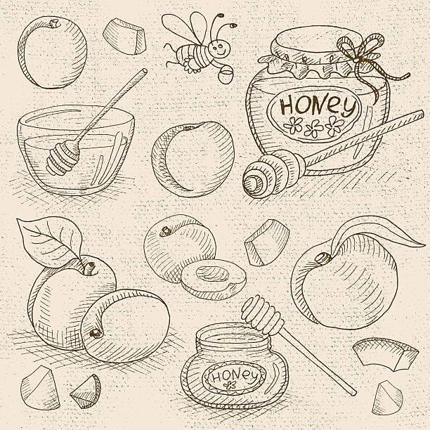 set of chalk drawn on a blackboard food, spices. - pflaumenkuchen stock-grafiken, -clipart, -cartoons und -symbole