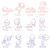 Presentation of baby growth from newborn to toddler with text. First year. Cute boy or girl of 0-12 months. Vector color illustration. Design template.