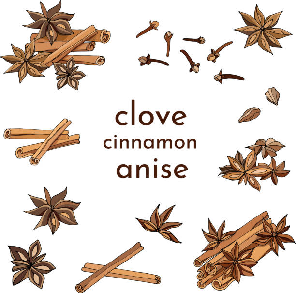 Set of cinnamon, anise and cloves, spices for tea and coffee on a white background. Realistic vector illustration for decoration of menus, tea and coffee cards. Set of cinnamon, anise and cloves, spices for tea and coffee on a white background. Realistic vector illustration for decoration of menus, tea and coffee cards. star anise stock illustrations