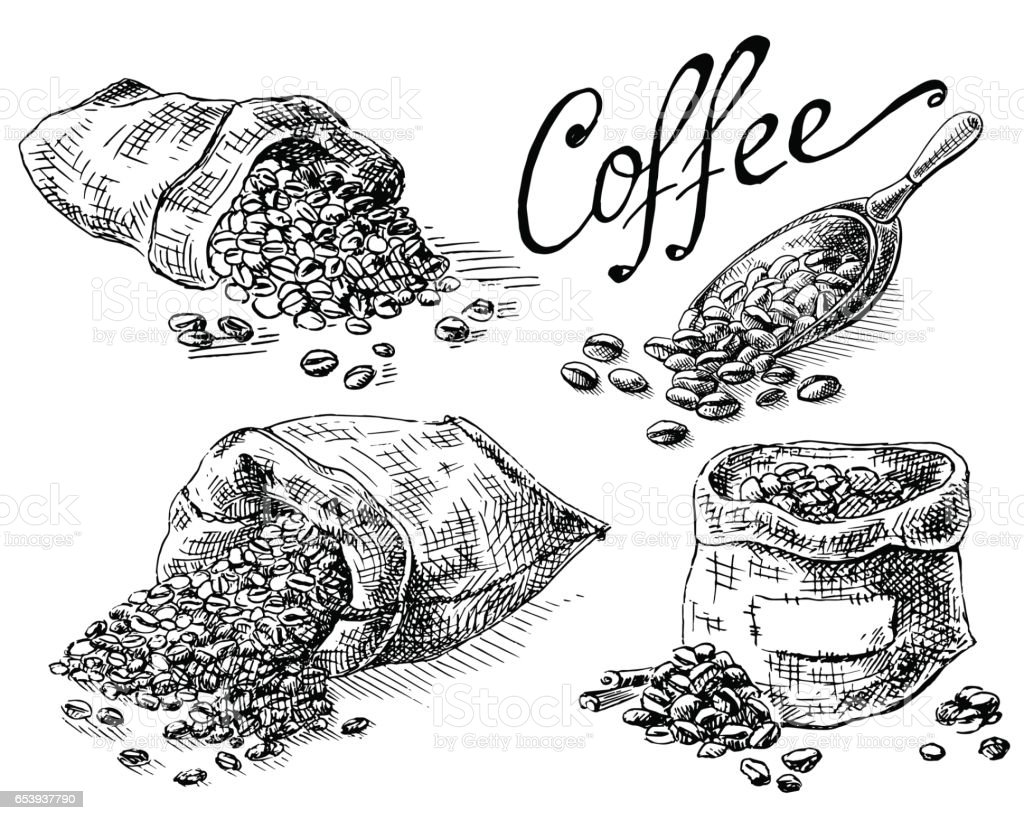 set of coffee beans in bag vector art illustration