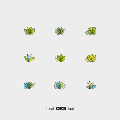 set of color plant floral and leaf pattern icon