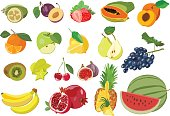 Collection of vector illustrations of colorful fruits isolated on white background: feijoa, figs, papayas, watermelon, lemon, kiwi, pomegranate, pineapple.