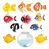 Set of colored tropical aquarium fish and bowl