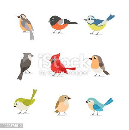 Vector Illustration of Set of colorful birds isolated on white background  eps10