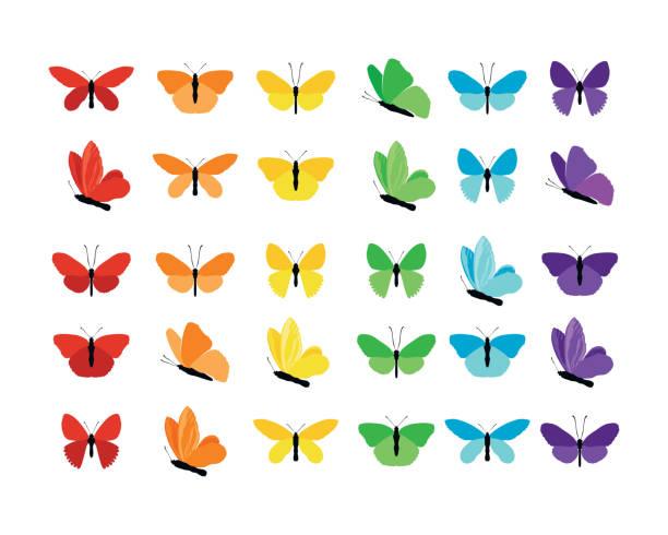 illustrations, cliparts, dessins animés et icônes de ensemble de papillons colorés silhouettes collection printemps et l'été avec différentes formes d'ailes. isolé sur fond blanc, pour illustration, ornements, tatouage. illustration vectorielle. - papillon