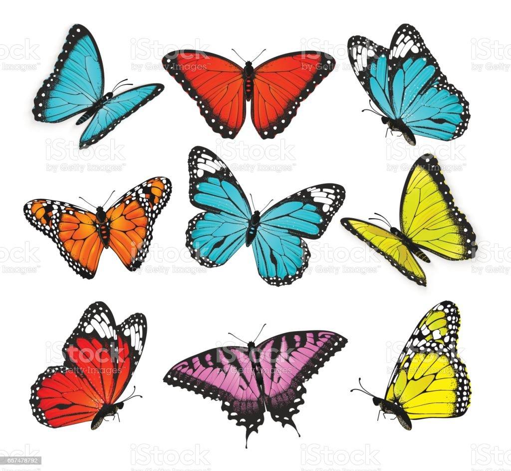 Set Of Colorful Butterflies Vector Illustration Stock Vector Art