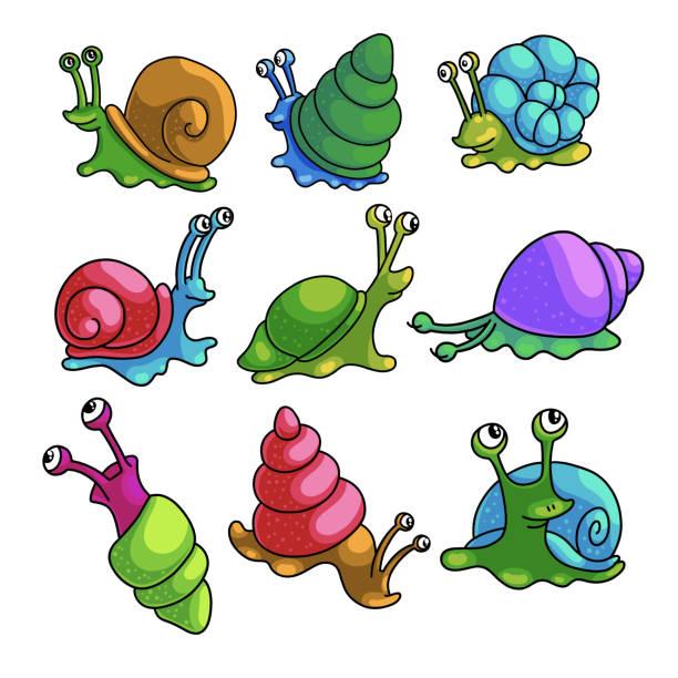 stockillustraties, clipart, cartoons en iconen met reeks kleurrijke grappige slakken van de streek van de stadsdierentuin - slak