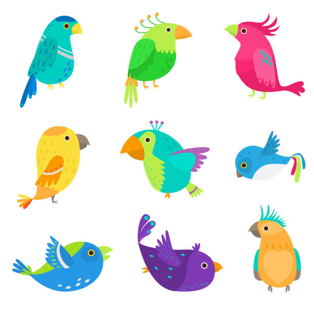 Set of colorful exotic and tropical parrot, cute bird Set of colorful exotic and tropical parrot, cute bird and good friend. Flat style. Vector illustration on white background blue clipart stock illustrations
