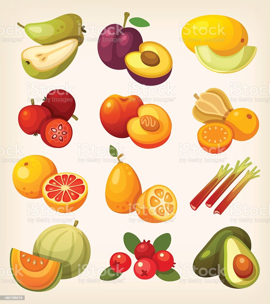 Set of colorful exotic fruit vector art illustration
