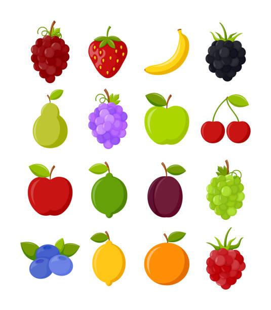 ilustrações de stock, clip art, desenhos animados e ícones de set of colorful fruits - fruta