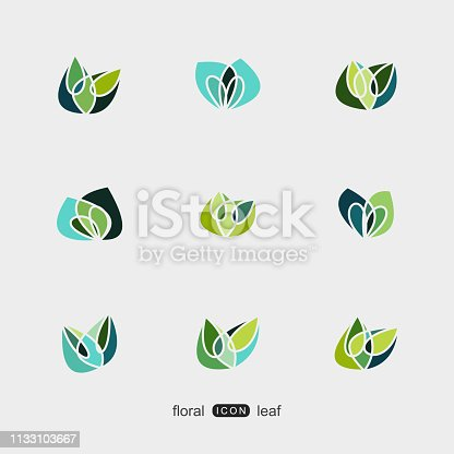 set of colorful plant floral and leaf pattern icon