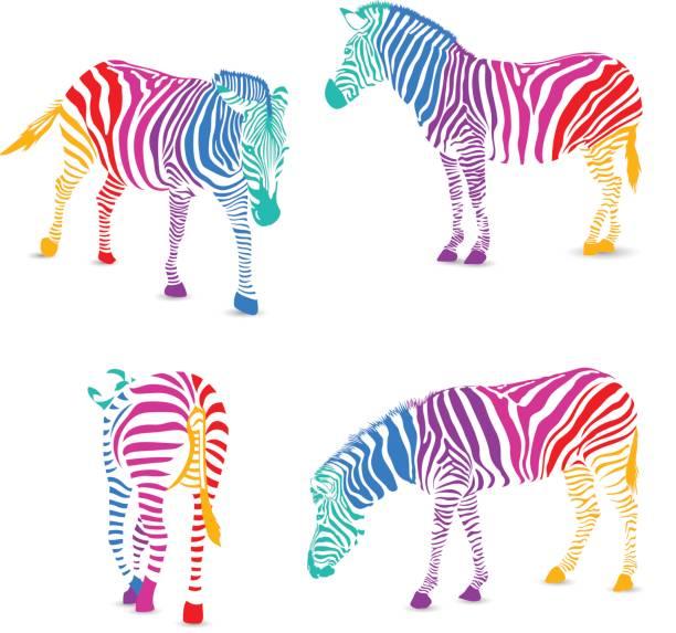 reihe von bunten zebra. - zebras stock-grafiken, -clipart, -cartoons und -symbole
