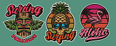 Set of colourful Hawaii surfing illustrations with tiki mask, skull, flamingo. These vector are perfect for logos, shirt prints and many other uses as well.