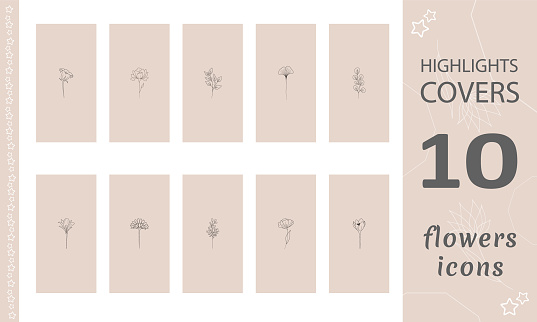 Set of contemporary hand drawn flowers. Highlights Stories Covers for popular social media. Perfect for bloggers. Doodle botanical icons. Modern vector illustration