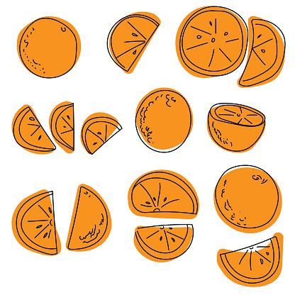 Set of contour oranges doodle on a color spot, orange juicy citrus fruits whole, halves and slices for design