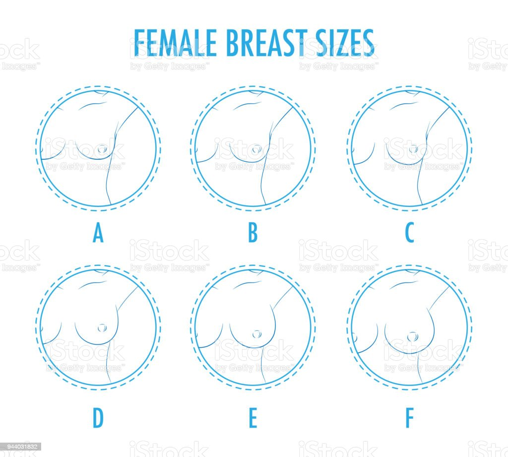 Set of contour round icons of different female breast size, body -  Illustration .