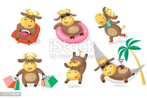 Set of cows or bulls in different poses