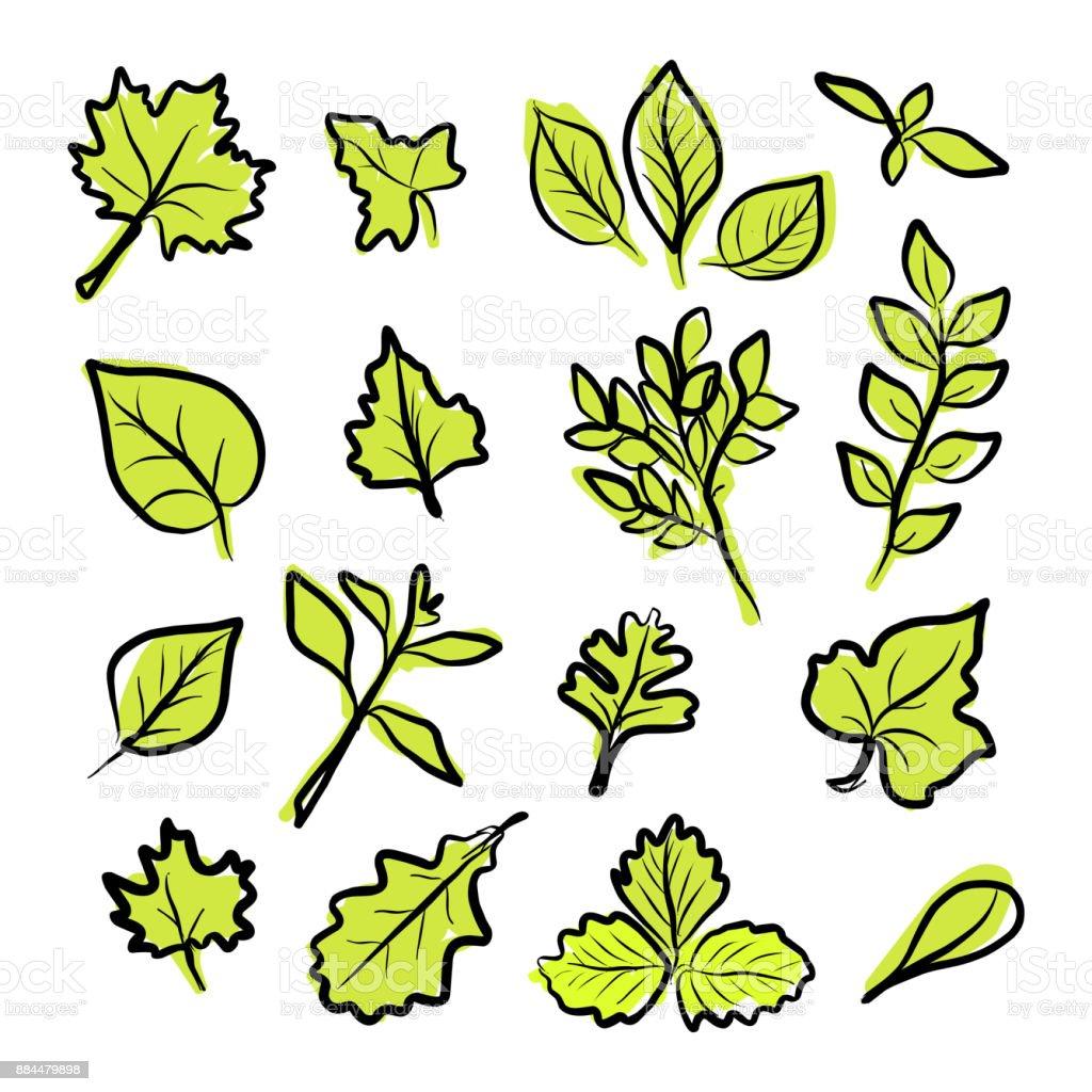 Ilustración De Conjunto De Mano Creativo Dibujo Verde Hojas De