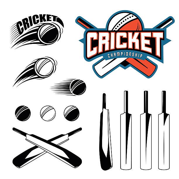 ilustraciones, imágenes clip art, dibujos animados e iconos de stock de set of cricket sports template logo elements - ball, bat - críquet
