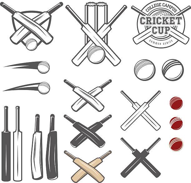 satz von cricket team-emblem design-elemente - cricket stock-grafiken, -clipart, -cartoons und -symbole