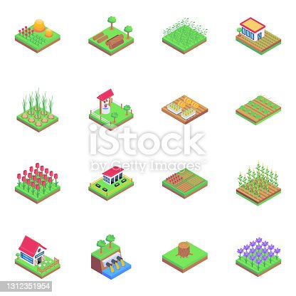 istock Set of Cultivation in Isometric Icons 1312351954