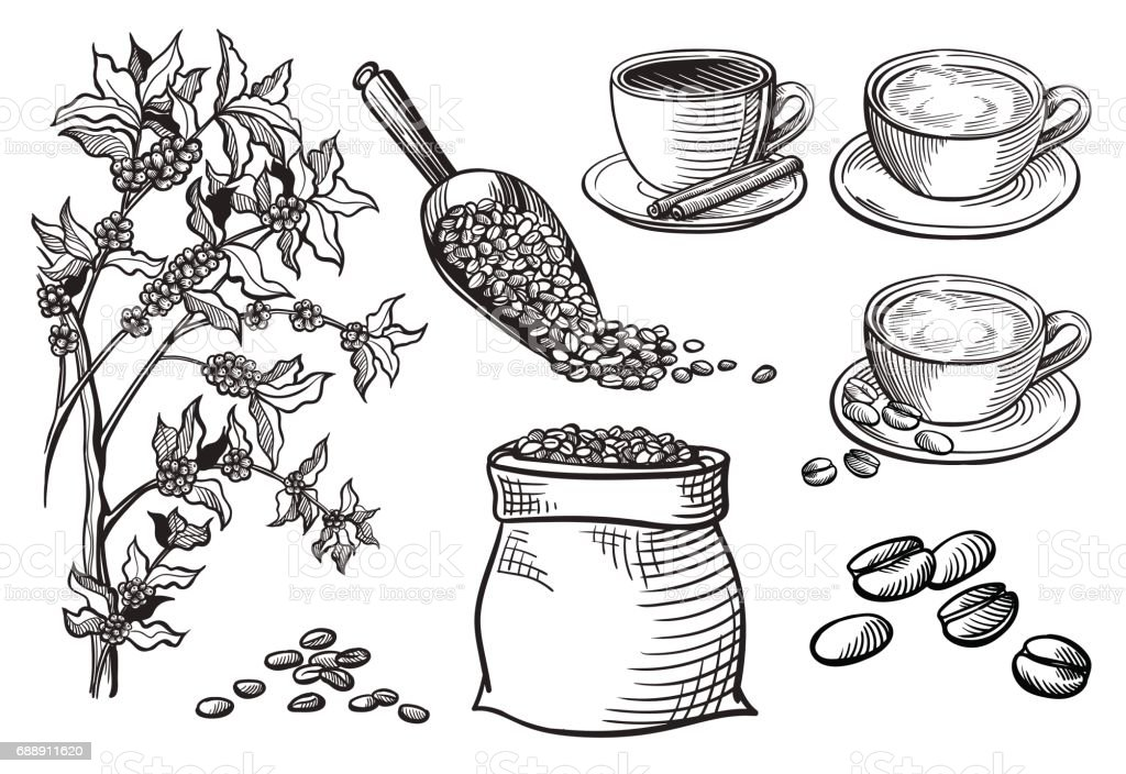 set of cup and coffee turk vector art illustration