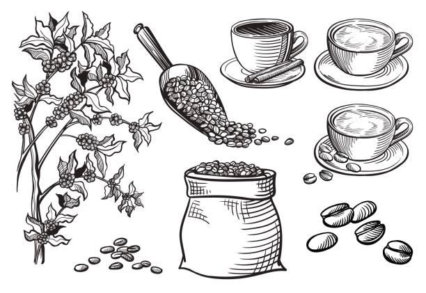 컵과 커피 터크의 집합 - coffee stock illustrations