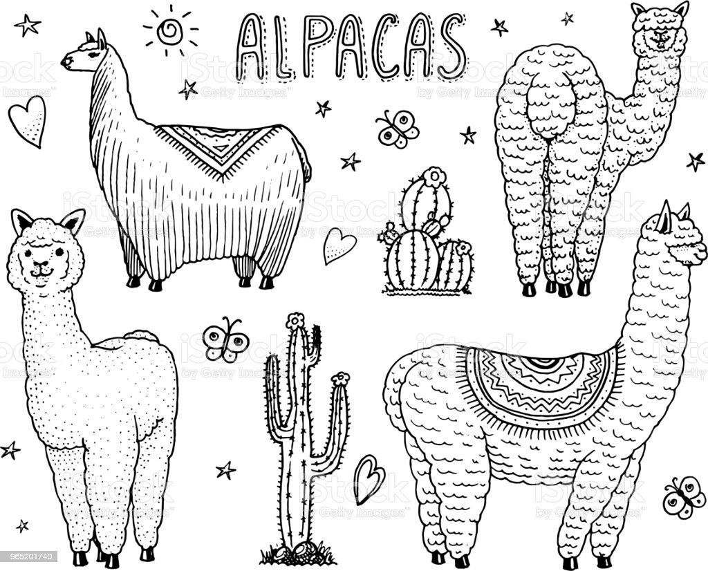 Set of cute Alpaca Llamas or wild guanaco on the background of Cactus. Funny smiling animals in Peru for cards, posters, invitations, t-shirts. Hand drawn Elements. Engraved sketch royalty-free set of cute alpaca llamas or wild guanaco on the background of cactus funny smiling animals in peru for cards posters invitations tshirts hand drawn elements engraved sketch stock vector art & more images of abstract