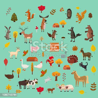 Set of cute and cute farm and forest animals, fox, bear, wolf, pig, rabbit, cat raccoon
