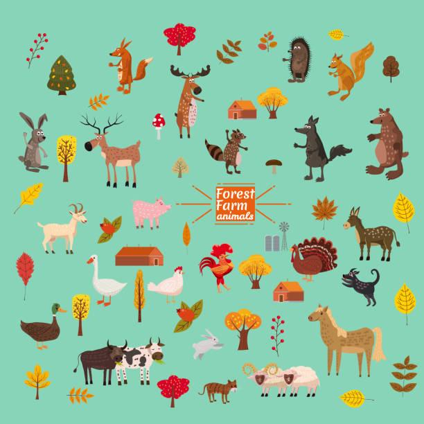 bildbanksillustrationer, clip art samt tecknat material och ikoner med uppsättning av söt och söt gård och skogen djur, räv, björn, varg, gris, kanin, katt, tvättbjörn, ko, häst, tjur, ko, ekorre, tecknad stil, greeting card, illustration, vektor, banner, isolerade - hund skog