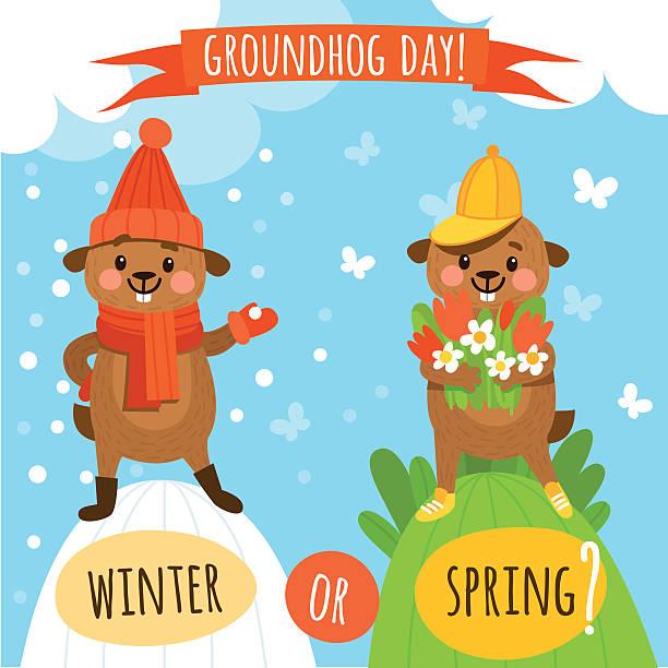 ilustraciones, imágenes clip art, dibujos animados e iconos de stock de juego de simpáticos y divertido marmots para el groundhog día - groundhog day