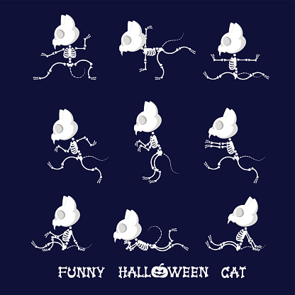 set of cute and funny skeleton cat in different poses