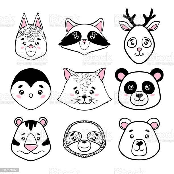 Set of cute animal faces black white panda sloth squirrel raccoon vector id887856072?b=1&k=6&m=887856072&s=612x612&h=4wvhuzb60 ikvf1u72iqiyfgla8evsmwrhynhlqtrk0=