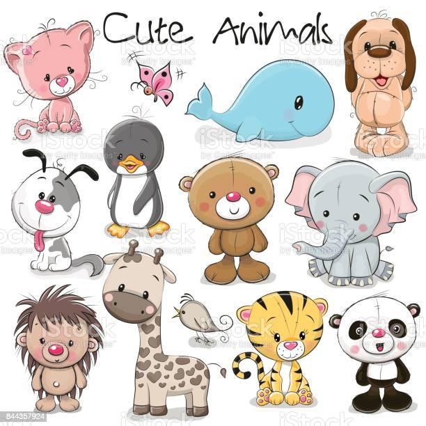 Set of cute animals vector id844357924?b=1&k=6&m=844357924&s=612x612&h=k9njkx8tcmanwbie8ena6zxaehpz7t8anjfmbzsgi3a=