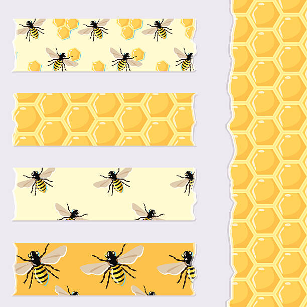 Set of cute bee and honey patterned Washi Tape strips Vector set of cute bee and honey patterned Washi Tape strips for scrapbook, decor, cards bee borders stock illustrations