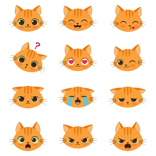 set of cute cartoon cat emotions - cat stock illustrations