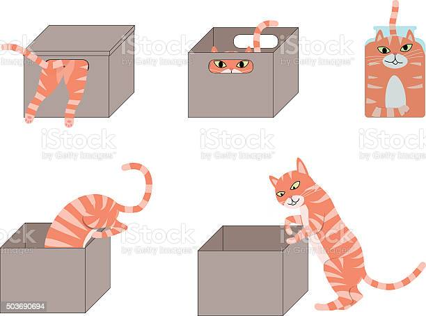Set of cute cartoon cats in boxes vector id503690694?b=1&k=6&m=503690694&s=612x612&h=ebzihnher2wbefa1ufmbi7un7wimrrsce6rw9nz ple=