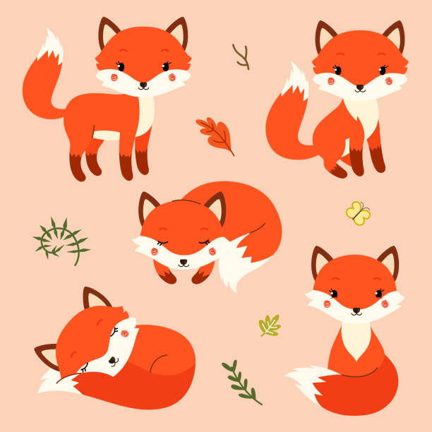 Set of cute cartoon foxes in modern simple flat style. vector art illustration