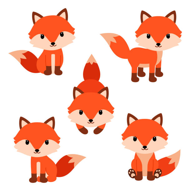 Set of cute cartoon foxes in modern simple flat style. Set of cute cartoon foxes in modern simple flat style. Vector illustration isolated on white background. fox stock illustrations