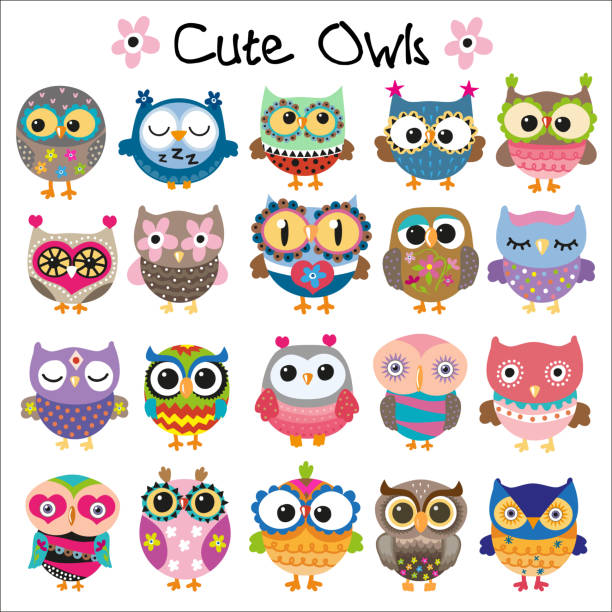 set of cute cartoon owls - sowa stock illustrations