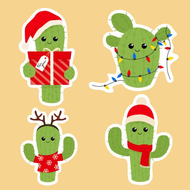 179 Christmas Cactus Illustrations Clip Art Istock
