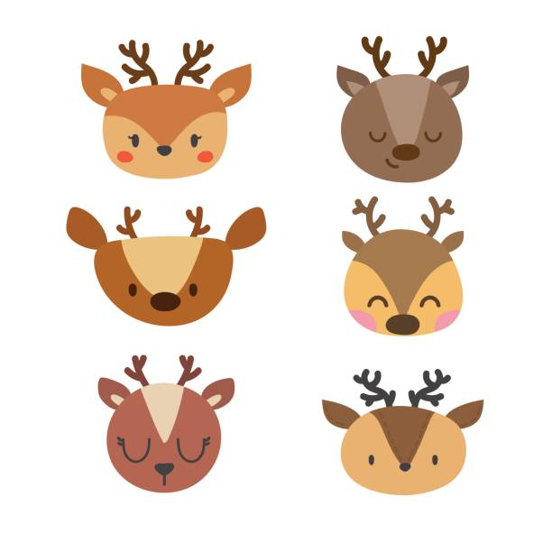 Set of cute deers. Funny doodle animals. Little fawn in cartoon style vector art illustration