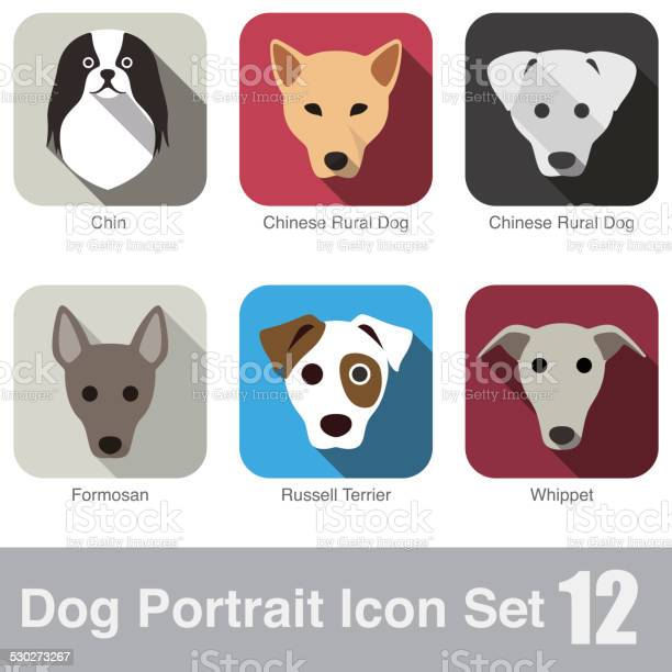 Set of cute dog head icons vector illustration vector id530273267?b=1&k=6&m=530273267&s=612x612&h=sycsala9q1iui5bbk4ax485tk7ifp wncdelqkowhzu=