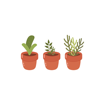 Set of cute flowerpots vector illustration in flat style