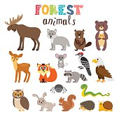 Set of cute forest animals in vector. Woodland. Cartoon style. Vector illustration