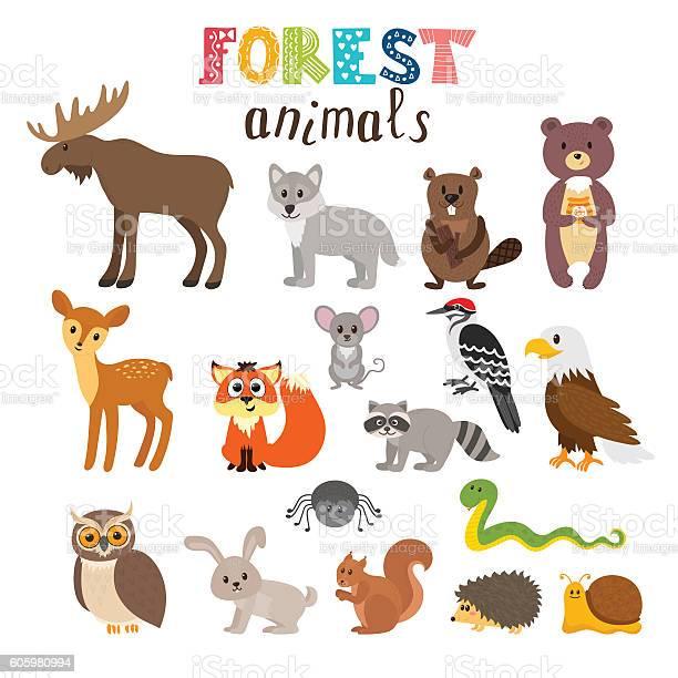 Set of cute forest animals in vector woodland cartoon style vector id605980994?b=1&k=6&m=605980994&s=612x612&h=bjv u1xni4ydxooii 8orlntjwz5edor90mccpiprka=