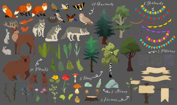bildbanksillustrationer, clip art samt tecknat material och ikoner med uppsättning av söt skog element - djur, träd och andra. dekorativa söta vektorillustration för design - wood stone