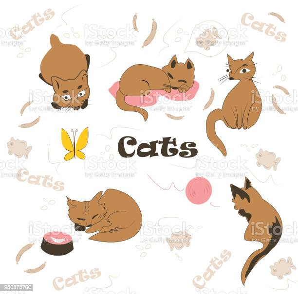 Set of cute funny kittens for design vector id950875760?b=1&k=6&m=950875760&s=612x612&h=q qfx7ywqaew dvlmynyv6grq24qspij33645lsen6m=