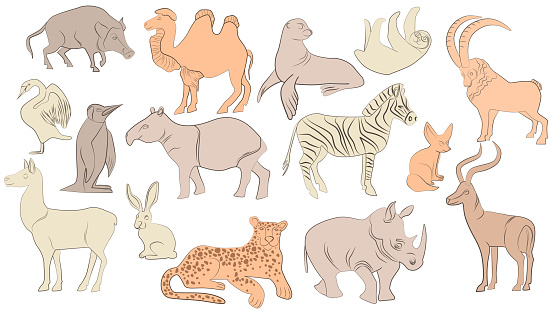 A set of cute jungle and African animals. Collection of exotic tropical birds, tiger, giraffe, rhino Children's characters. Flat vector illustration